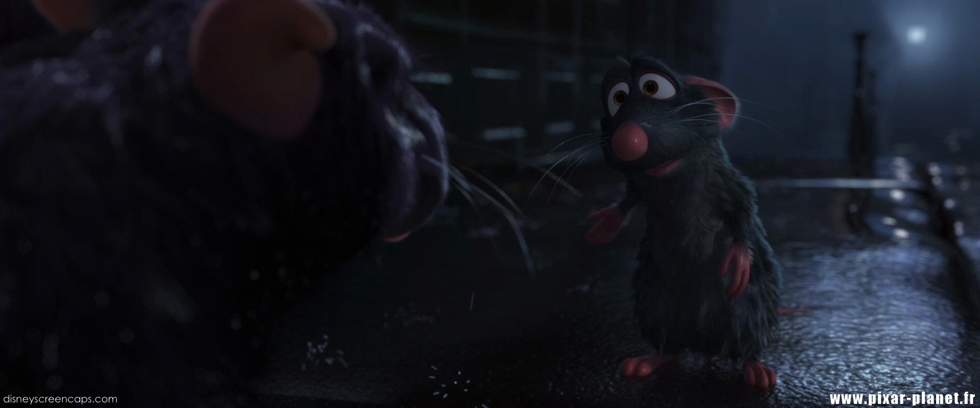 Ratatouille Dad for Pinterest