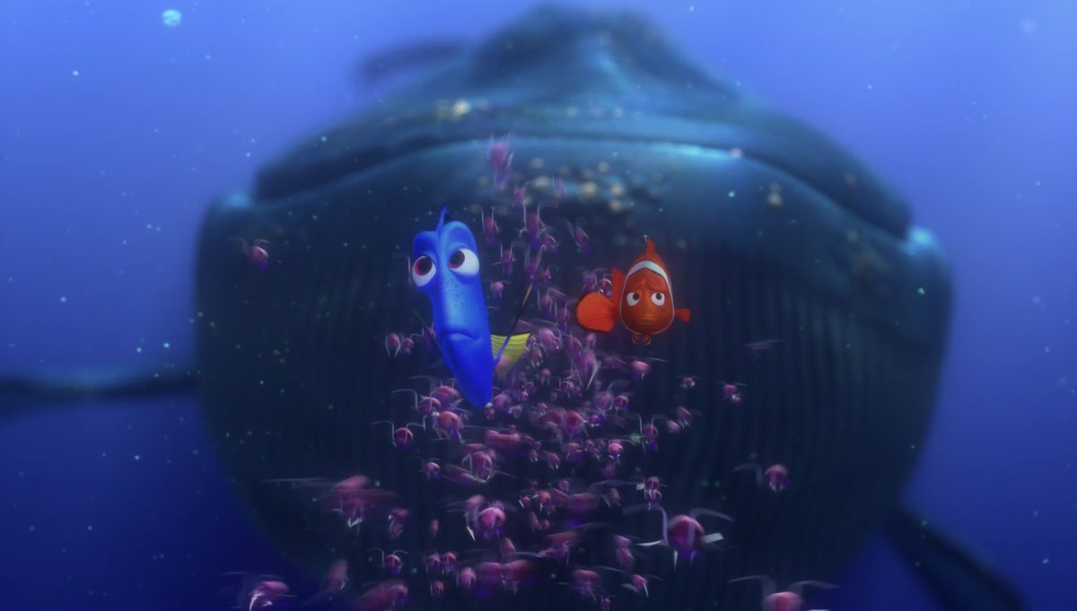 baleine whale personnage character monde nemo finding dory disney pixar