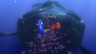baleine whale monde finding nemo disney pixar personnage character