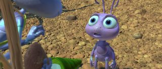 couette dot pixar disney personnage character 1001 pattes a bug life