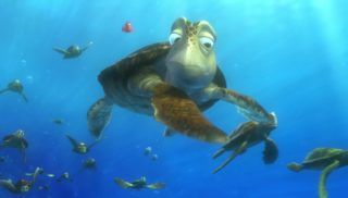 crush monde finding nemo disney pixar personnage character