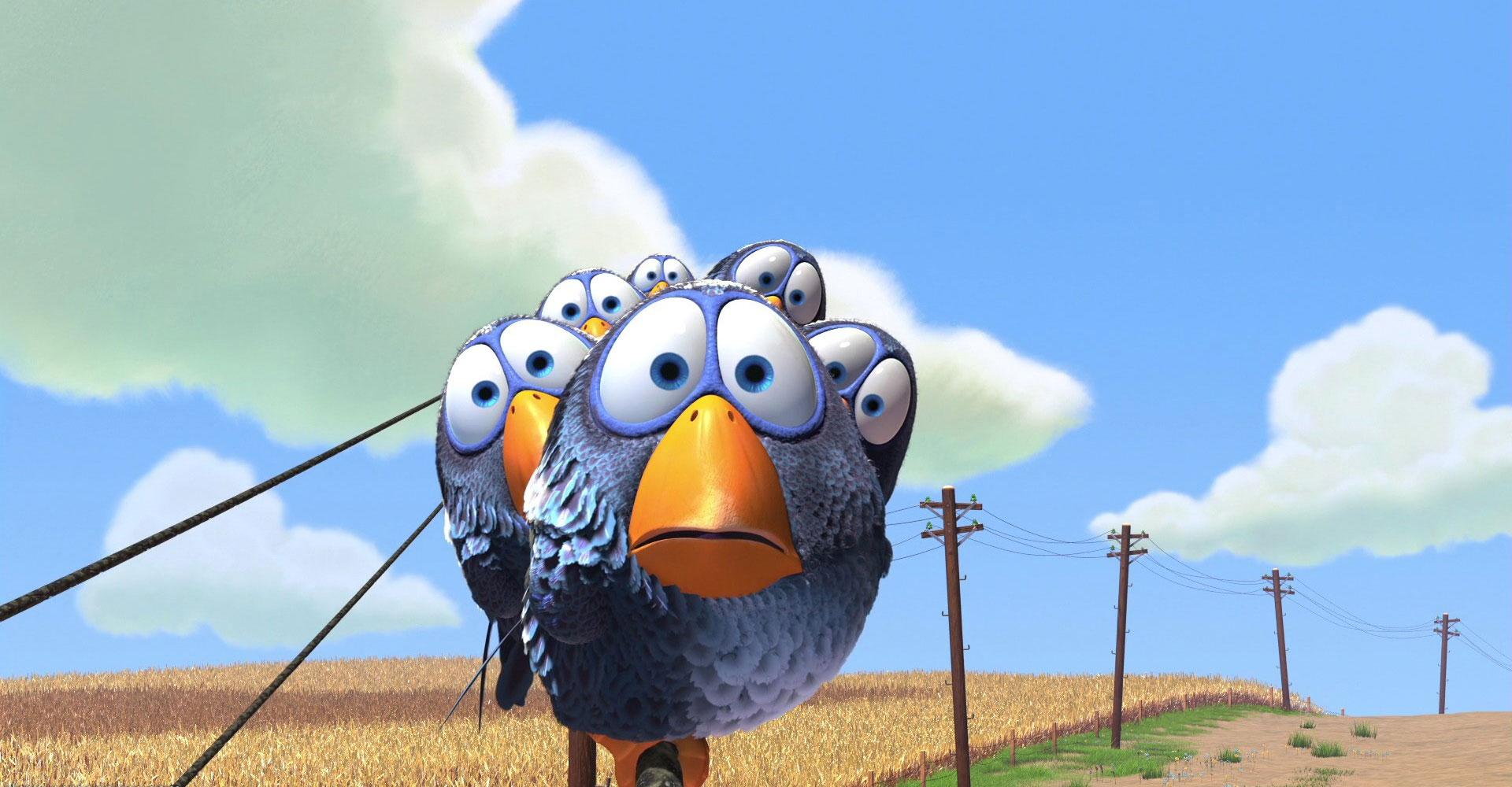 image birds drôle oiseaux ligne haute tension pixar disney