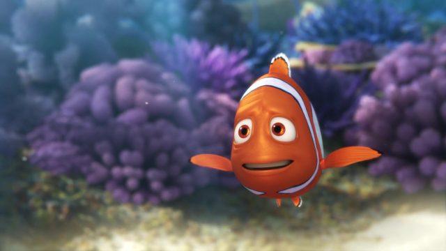 marin marlin personnage character monde nemo finding dory disney pixar