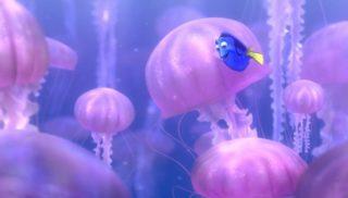 meduse jellyfish monde finding nemo disney pixar personnage character