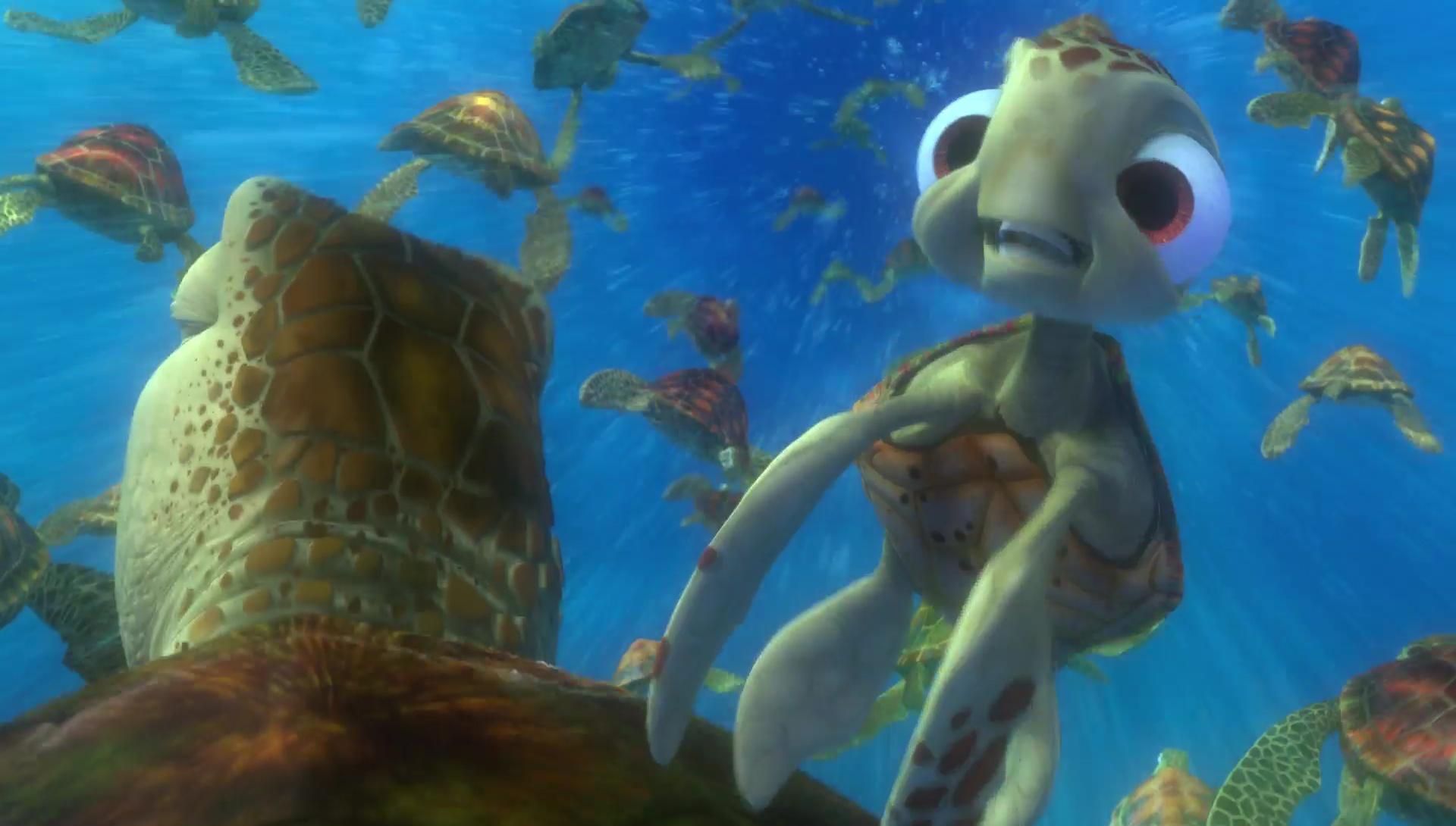 squiz squirt monde finding nemo disney pixar personnage character