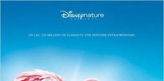 Disney Disneynature affiche ailes pourpres-