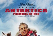 walt disney company walt disney pictures affiche antartica prisonniers froid poster eight below