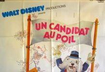 walt disney company walt disney pictures affiche candidat poil poster shaggy DA.