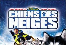 walt disney company walt disney pictures affiche chiens neiges poster snow dogs