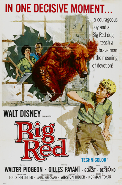walt disney company walt disney pictures affiche compagnon aventure poster big red