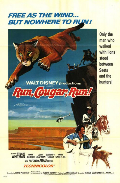 walt disney company walt disney pictures affiche cours couguar cours poster run cougar run