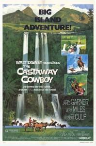 walt disney company walt disney pictures affiche cowboy hawai poster castaway cowboy