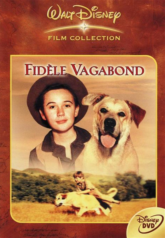 walt disney company walt disney pictures affiche fidele vagabond poster old yeller