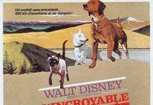 walt disney company walt disney pictures affiche incroyable randonnee poster incredible journey