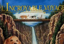 walt disney company walt disney pictures affiche incroyable voyage poster homeward bound incredible journey