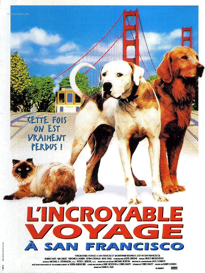 walt disney company walt disney pictures affiche incroyable voyage 2 san francisco homeward bound 2 lost san francisco