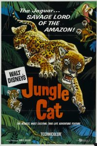 walt disney company walt disney pictures true life adventures affiche jaguar seigneur amazonie poster jungle cat