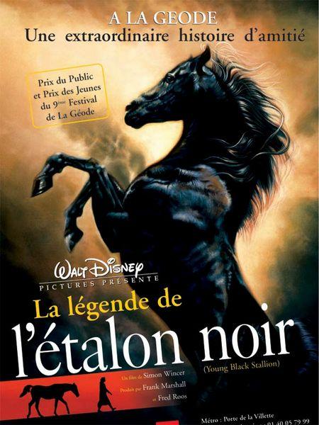 walt disney company walt disney pictures affiche legende etalon noir poster young blanck stallion
