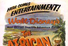 walt disney company walt disney pictures true life adventures affiche lions afrique poster african lion