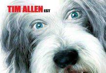 walt disney company walt disney pictures affiche raymond vie chien poster shaggy dog