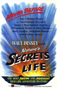 walt disney acompany walt disney pictures true life adventures affiche secret vie poster nature secret life