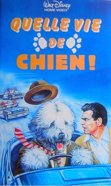 walt disney company walt disney pictures affiche vie chien poster shaggy dog