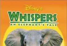 walt disney company walt disney pictures affiche whispers poster elephant tale