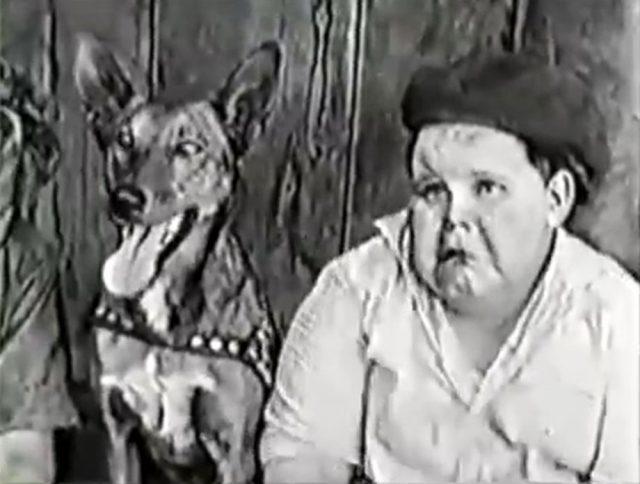 image alice dog catcher disney comedies