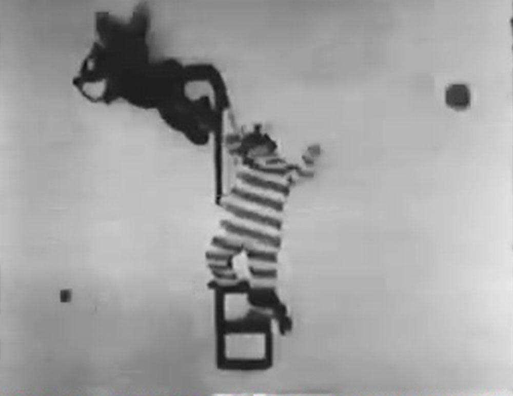 image alice jail bird disney comedies