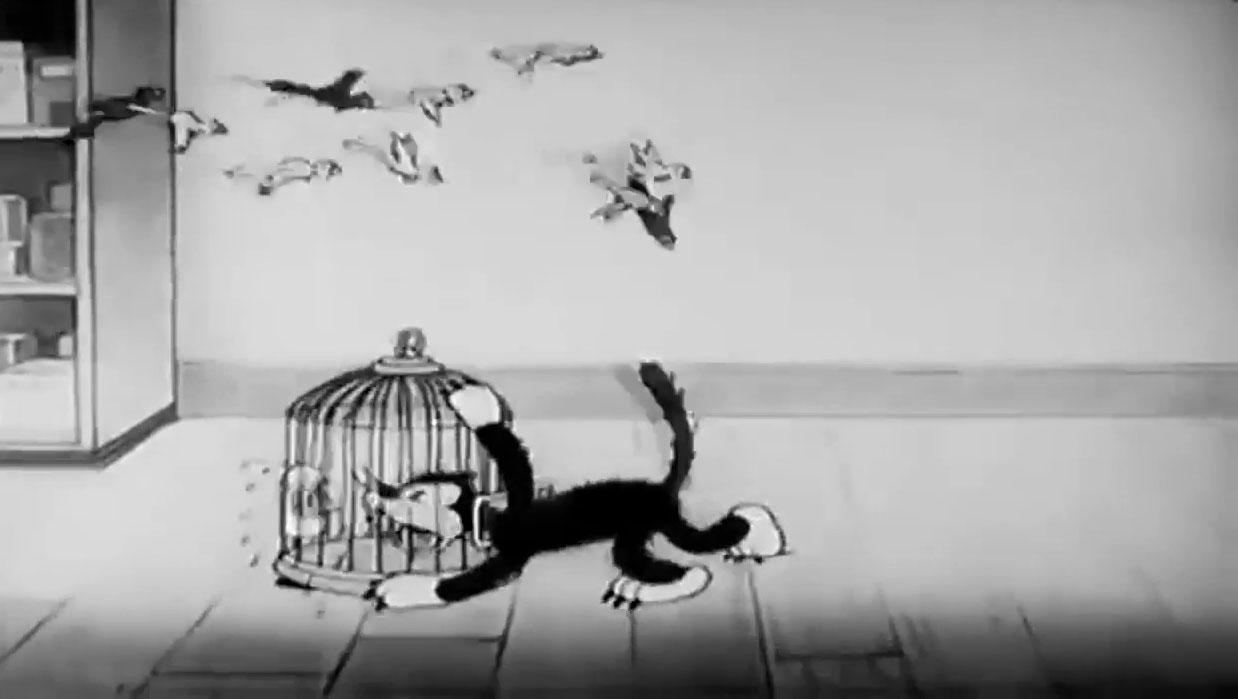 image bird store disney silly symphony