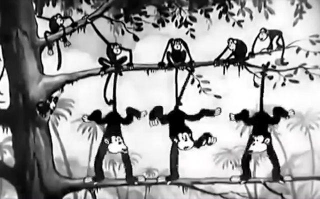 image monkey melodies disney silly symphony