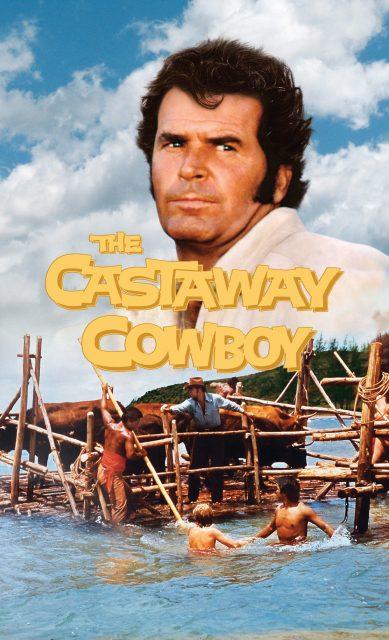 Affiche Poster cowboy hawai castaway disney