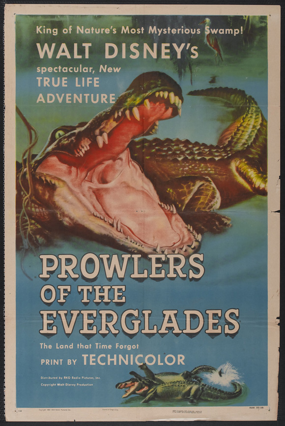 everglades monde mysterieux prowlers true life adventures Walt Disney Pictures poster affiche