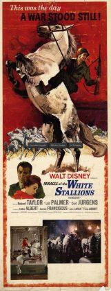 Affiche poster grand retour Miracle White Stallions disney