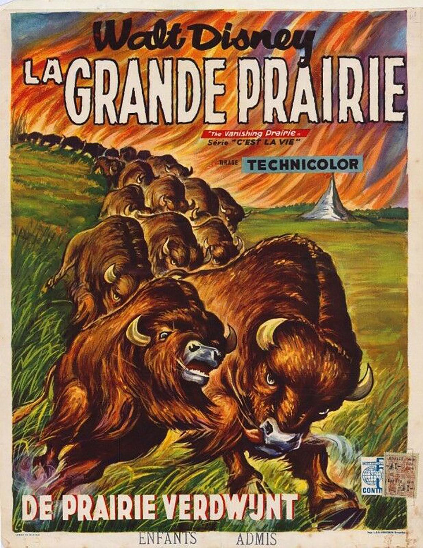affiche poster grande prairie vanishing disney