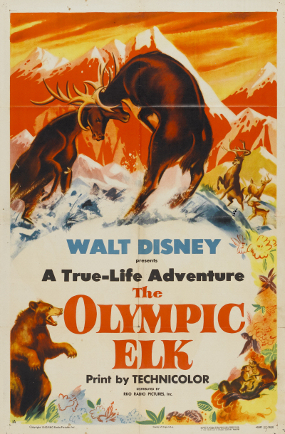 seigneur foret olympic elk true life adventures Walt Disney Pictures poster affiche