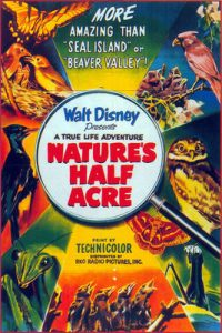 terre inconnue nature half acre true life adventures Walt Disney Pictures poster affiche