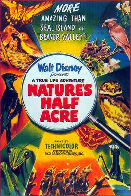 terre inconnue nature half acre true life adventures Walt Disney Pictures poster affiche