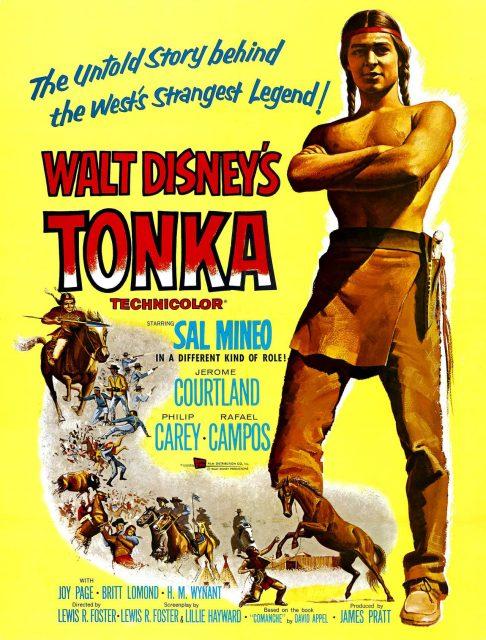 Affiche Poster tonka disney