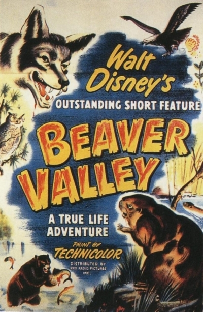 vallee castors beaver valley true life adventures Walt Disney Pictures poster affiche