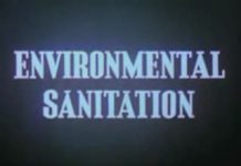 Disney Environmental Sanitation