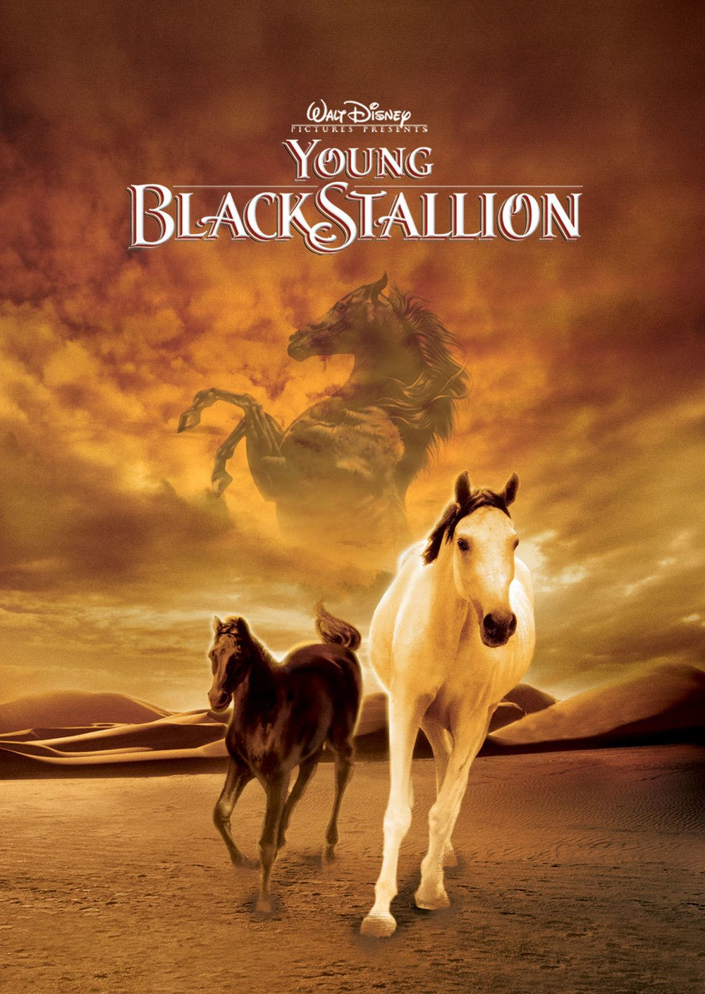 Affiche Poster légende étalon noir young black stallion disney