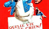 Affiche Poster quelle vie chien shaggy dog disney