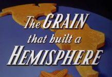 Disney The Grain that built a hemisphere