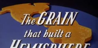 Disney The Grain that built a hemisphere