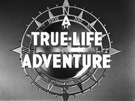 Disney Illustration-True-Life-Adventures-01