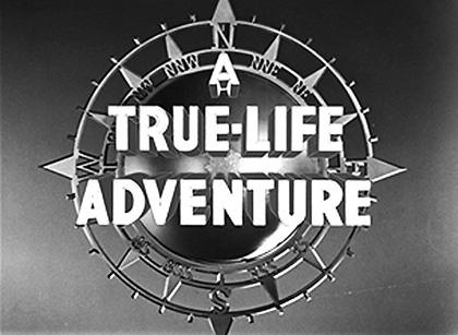 Disney Illustration-True-Life-Adventures-01