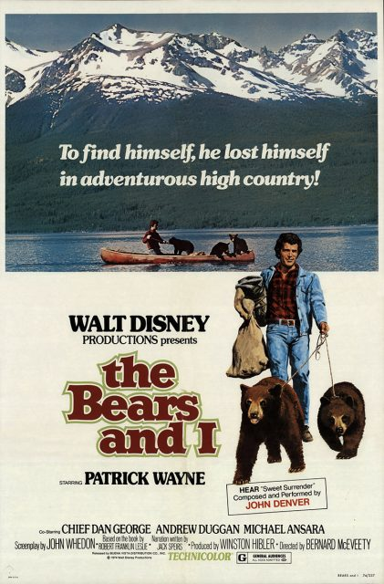 Affiche Poster amis ours bears disney