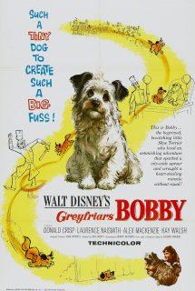 Affiche Poster bobby greyfriars disney
