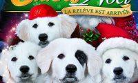 Affiche Poster Chiot Noël relève assurée santa Pups paws 2 disney